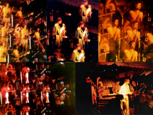 Parousia at Plant-6 1981
