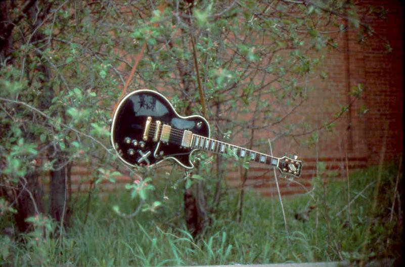 (6) Guitar slung from tree